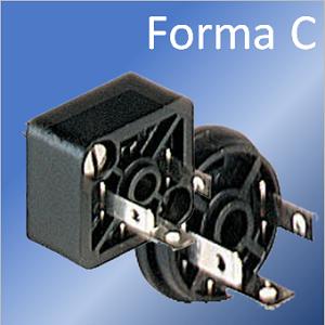 Forma C basetta